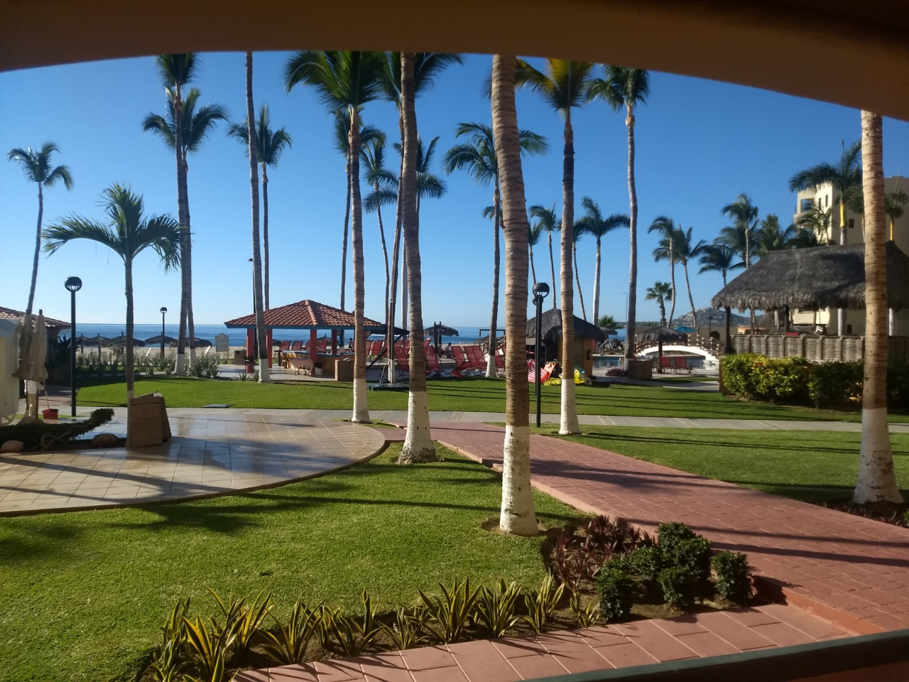 Coral Baja patio in March 2019